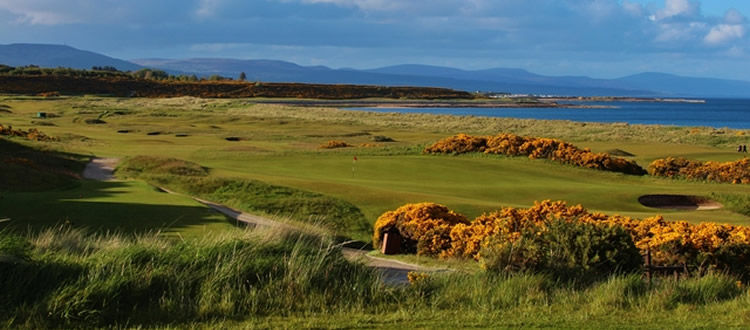 links-golf-cup-dornoch